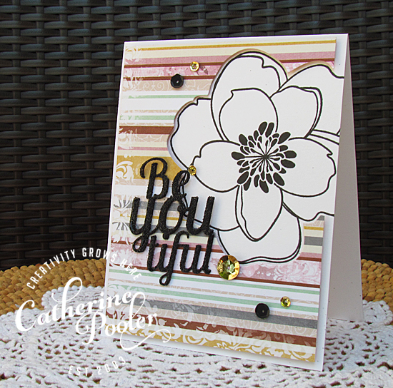 die cutting with the MISTI
