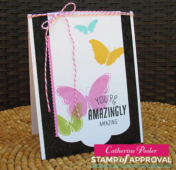 Amazing Butterflies 2
