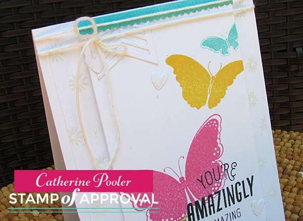 Amazing Butterflies 3